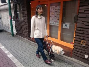 女性が歩道を盲導犬と歩いている写真